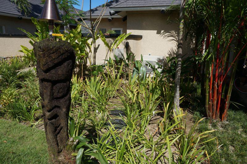 Kubota sewage treatment plant installed within the tropical gardens at Nanuku Beachfront Villas