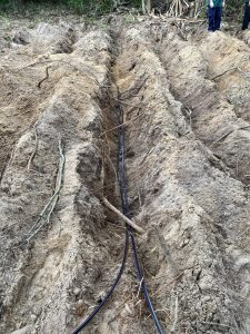 Sub surface drip irrigation was carefully dug and laid amongst protected areas of cultural and environmental significance.